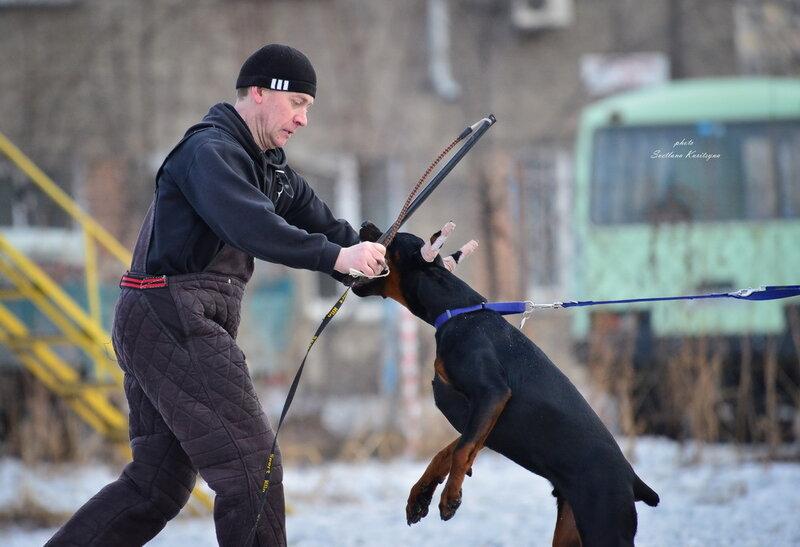http://img-fotki.yandex.ru/get/9251/22682307.fb/0_b687f_2911af43_XL.jpg