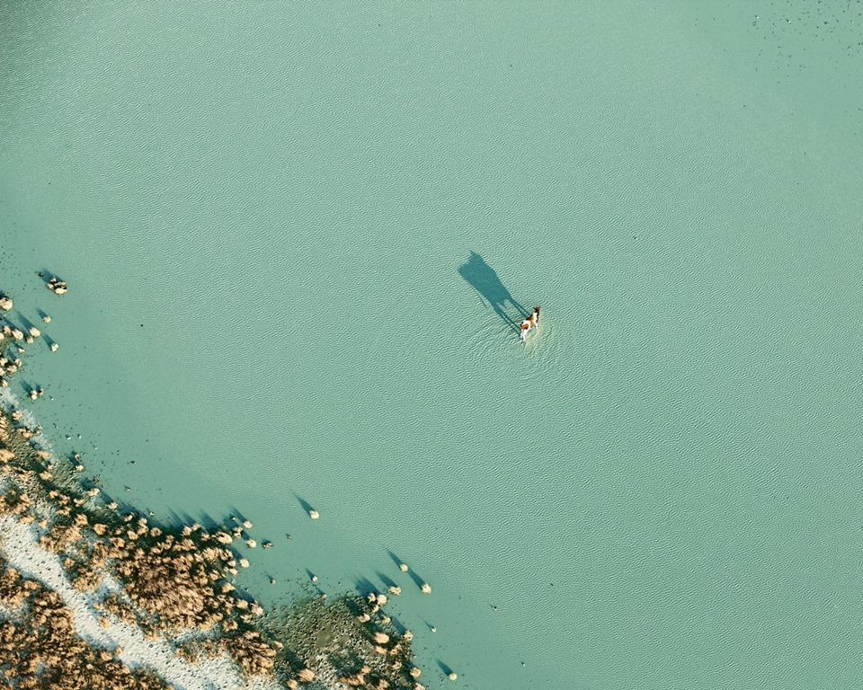 Фотограф Zack Seckler / Зак Секлер о нашем прекрасном, дивном, слегка ботсванском мире. 20 фото