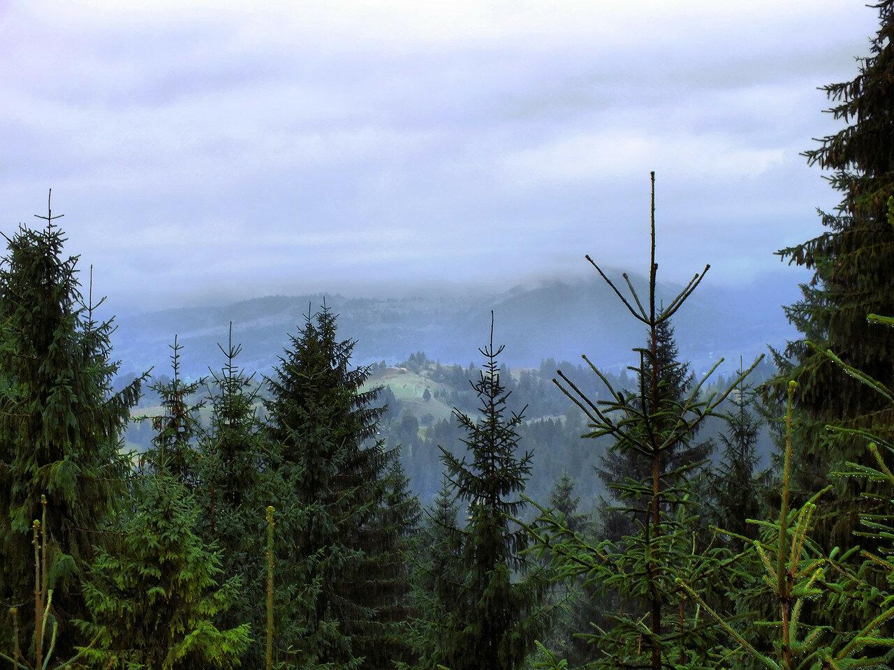 Карпаты с Яблунецкого перевала