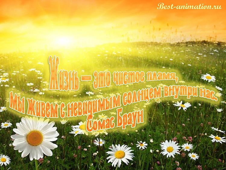 Цитаты великих людей - Что такое жизнь - Жизнь — это чистое пламя...