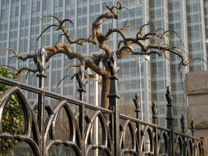 Искусно сформированное дерево, Пекин
