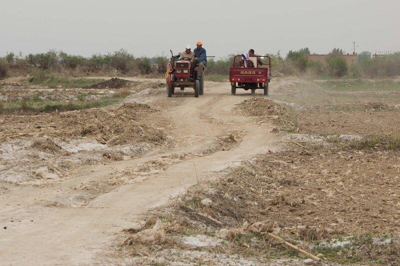 в долине Хэтао, Внутренняя Монголия, Китай