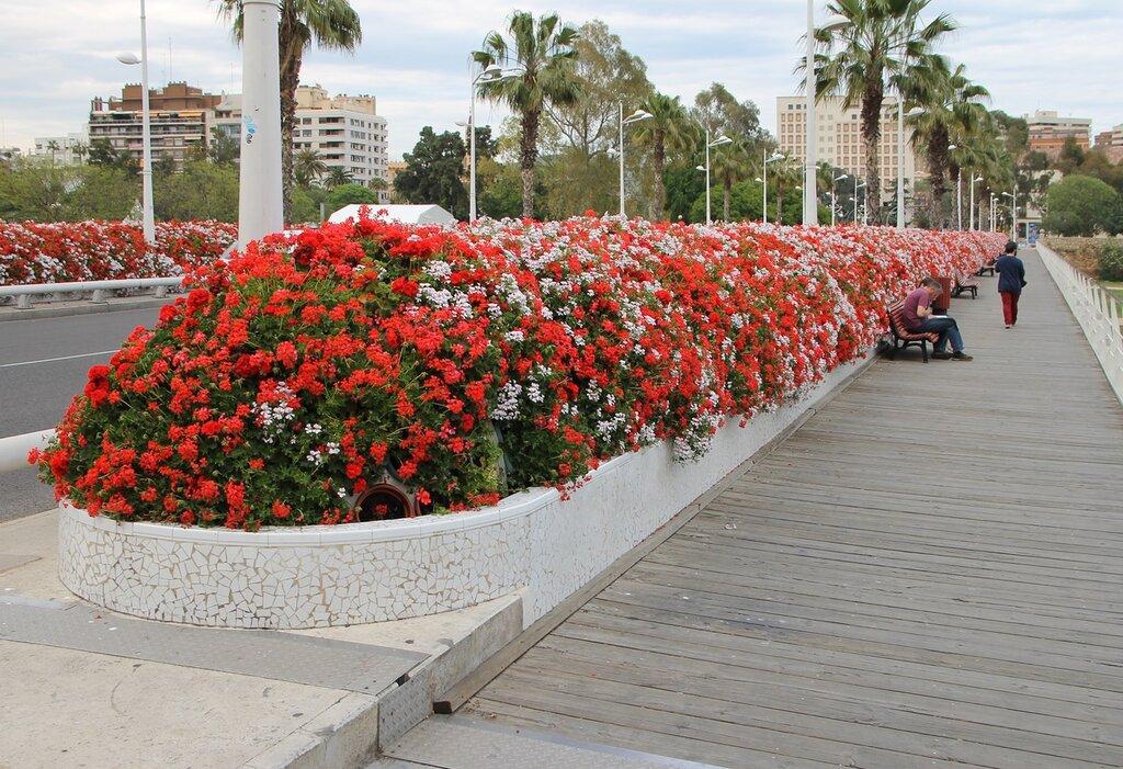 Валенсия. Цветочный мост (Puente de las Flores)