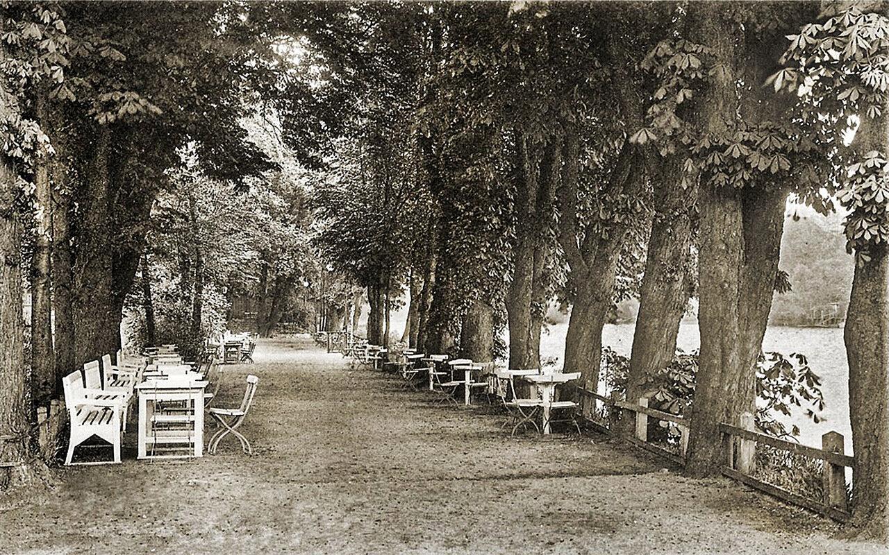 Летнее кафе на берегу Королевского озера