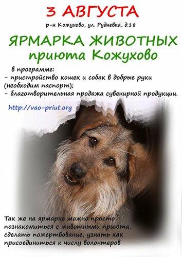 МОСКВА. Ярмарка животных Кожуховского приюта.