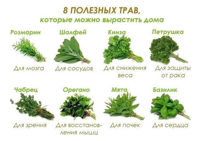 https://img-fotki.yandex.ru/get/9253/60534595.fd1/0_1639ca_4e8d1cef_XL.jpg