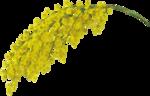 Golden Butterflys (62).png