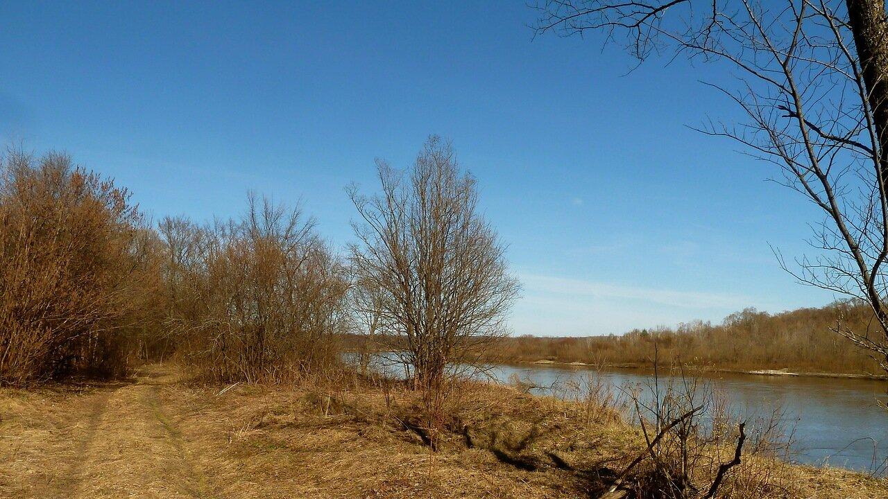 Река Сура. Автор фото: Сергей Апполонов