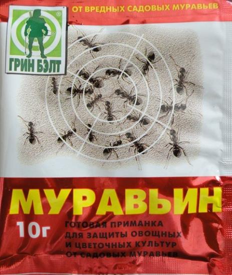 Избавляемся от тли и муравьев без химии-Муравьин