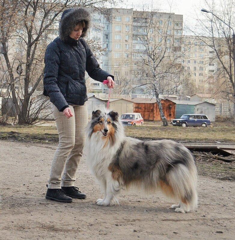 http://img-fotki.yandex.ru/get/9254/165274593.6/0_eec19_c9eed5f7_XL.jpg