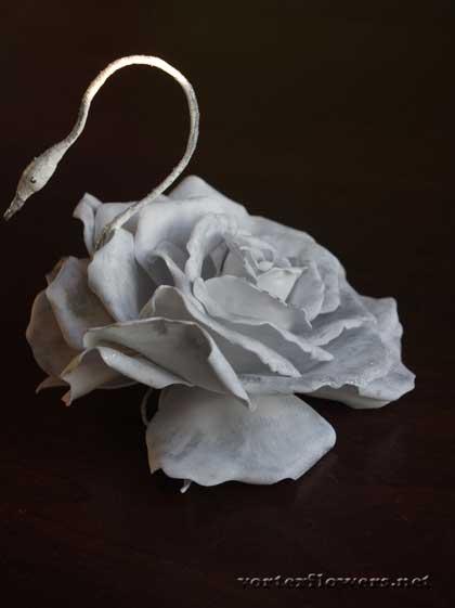 роза-лебедь