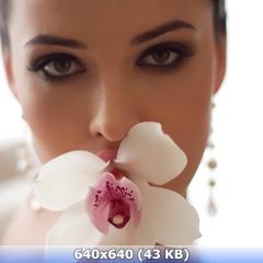 http://img-fotki.yandex.ru/get/9254/247322501.2f/0_168430_6c3f7eb3_orig.jpg
