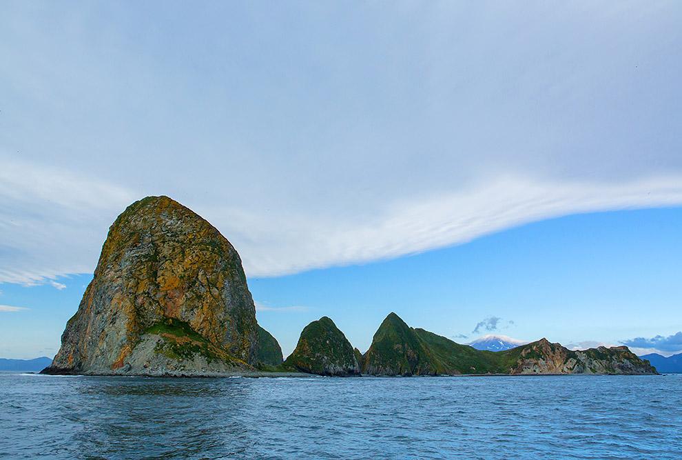 9. В южной части этого острова, на скалах, есть небольшое лежбище морских львов.