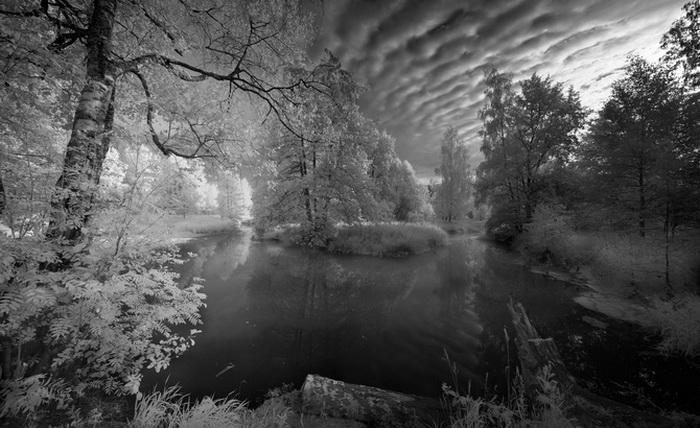 Удивительно, красиво и необычно;)) Инфракрасная природа от Андрея Ермолаева