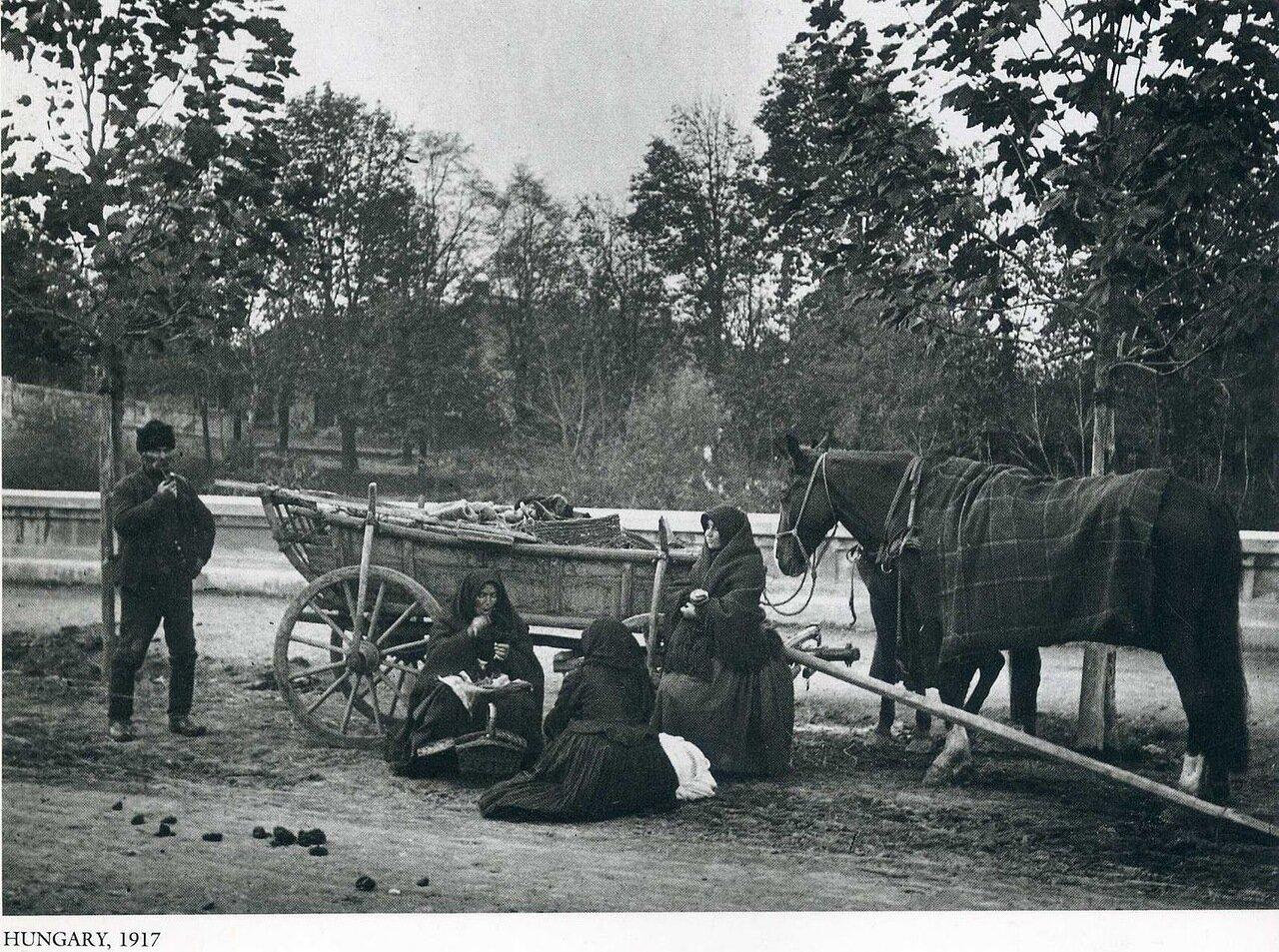 Венгрия, 1917