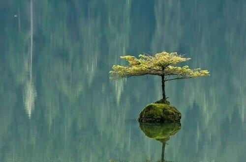 Красота, сотворенная природой, человеком, временем