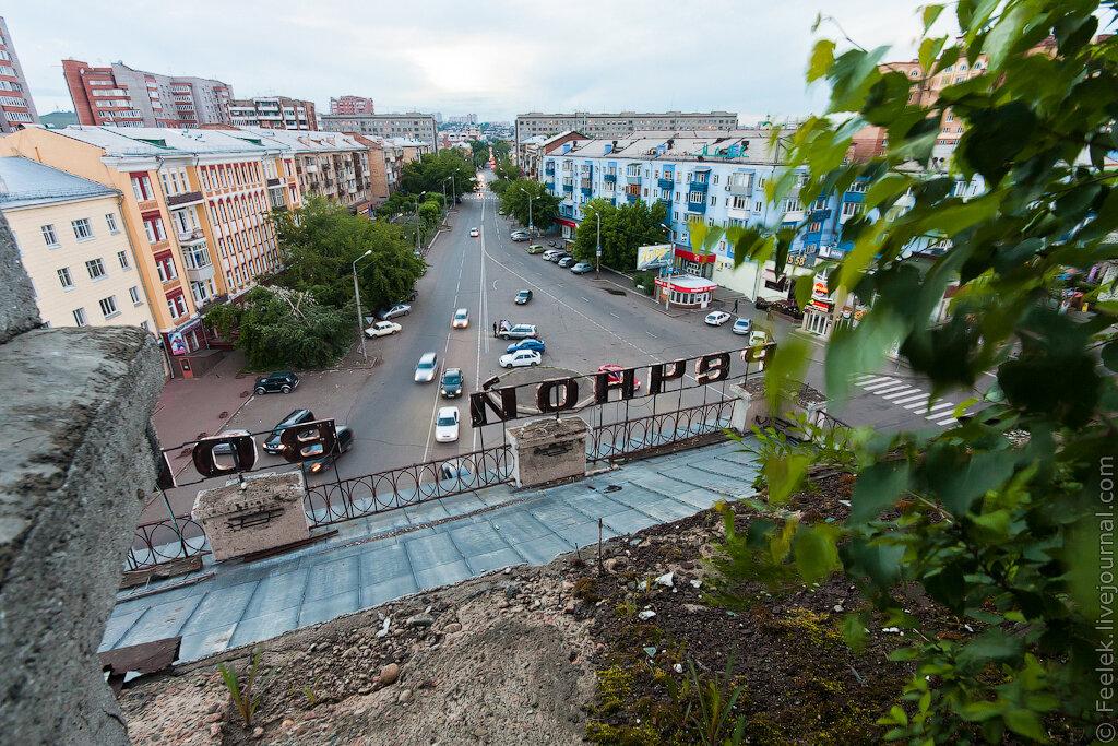 На крыше Речного вокзала Красноярска уже проросли деревья - явное свидетельство запустения и бесхозяйственности