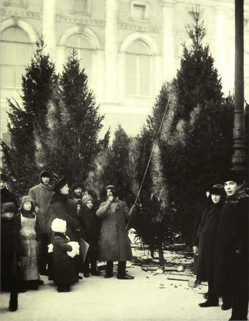 Елочный базар в Екатерининском саду.Санкт-Петербург. 1913.