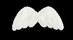 natali_design_dream_wings2.png