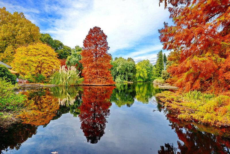 Новые прекрасные фотографии природы и городских сюжетов (Unsplash и Flickr) 0 145239 5fe16d9 XL