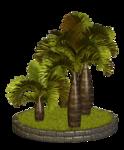 Palms  (32).png