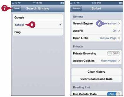 Экран Safari откроется снова, на этот раз — с выбранной поисковой машиной