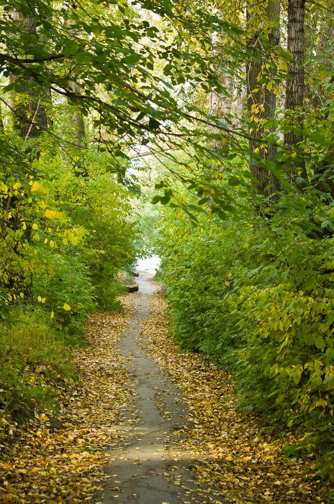 Осенний пейзаж, снятый на Nikon D5100 и телеобъектив Nikon 70-300
