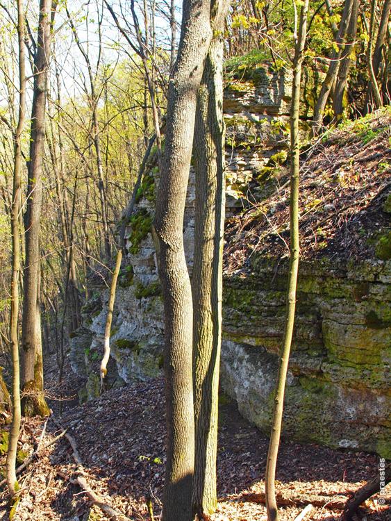 Воргольские скалы. Воронов Камень