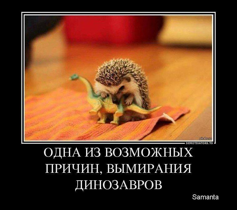 http://img-fotki.yandex.ru/get/9257/13005426.80/0_b6eea_560bfd41_XL.jpg