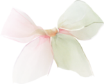 ldw_ShadesofSummer-bow-organza.png