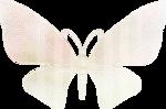 ldw_ShadesofSummer-butterfly1.png