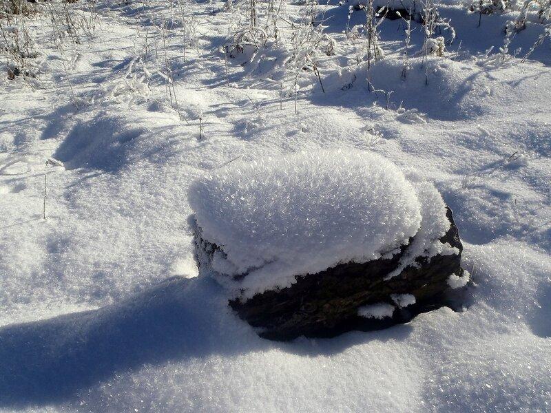 В окрестностях плато Лагонаки, январь 2013, Кавказ