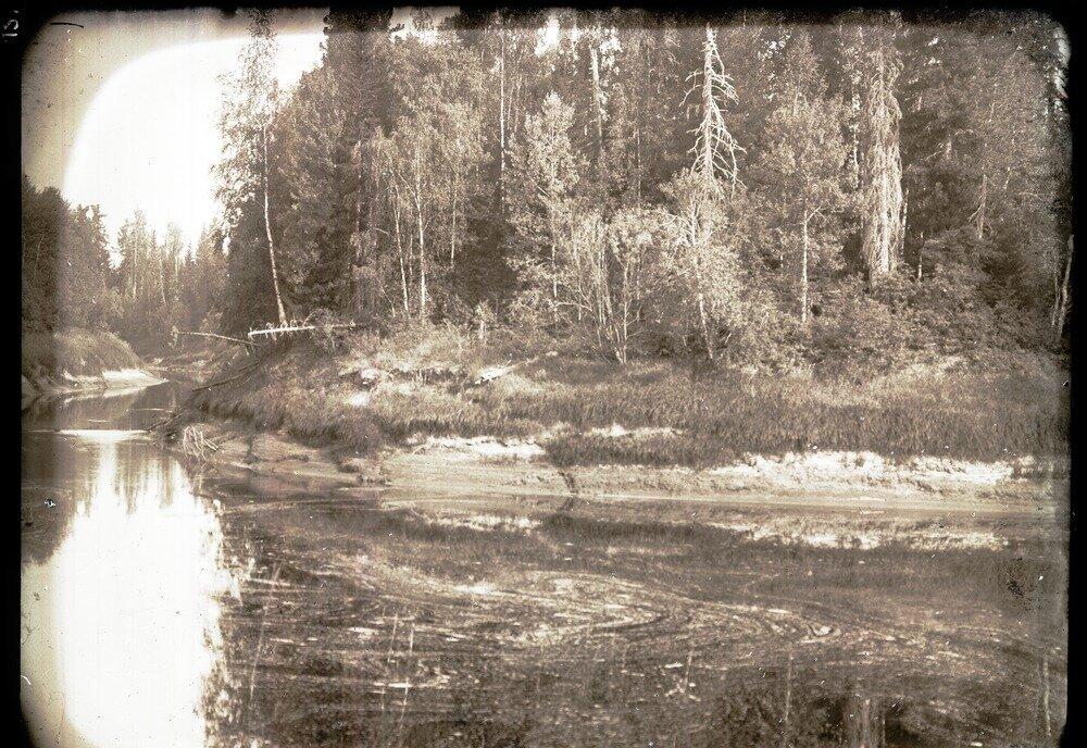 Устье Тарсана