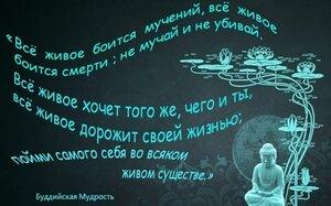 http://img-fotki.yandex.ru/get/9258/102768645.79/0_d4d56_888cbbdf_M.jpg