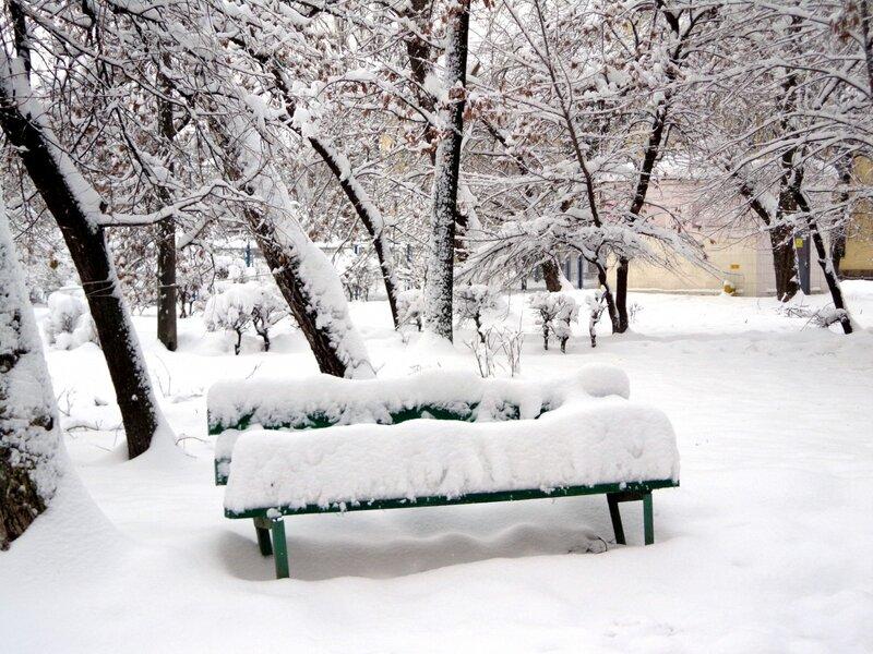 фото скамейка зимой церкви владимира