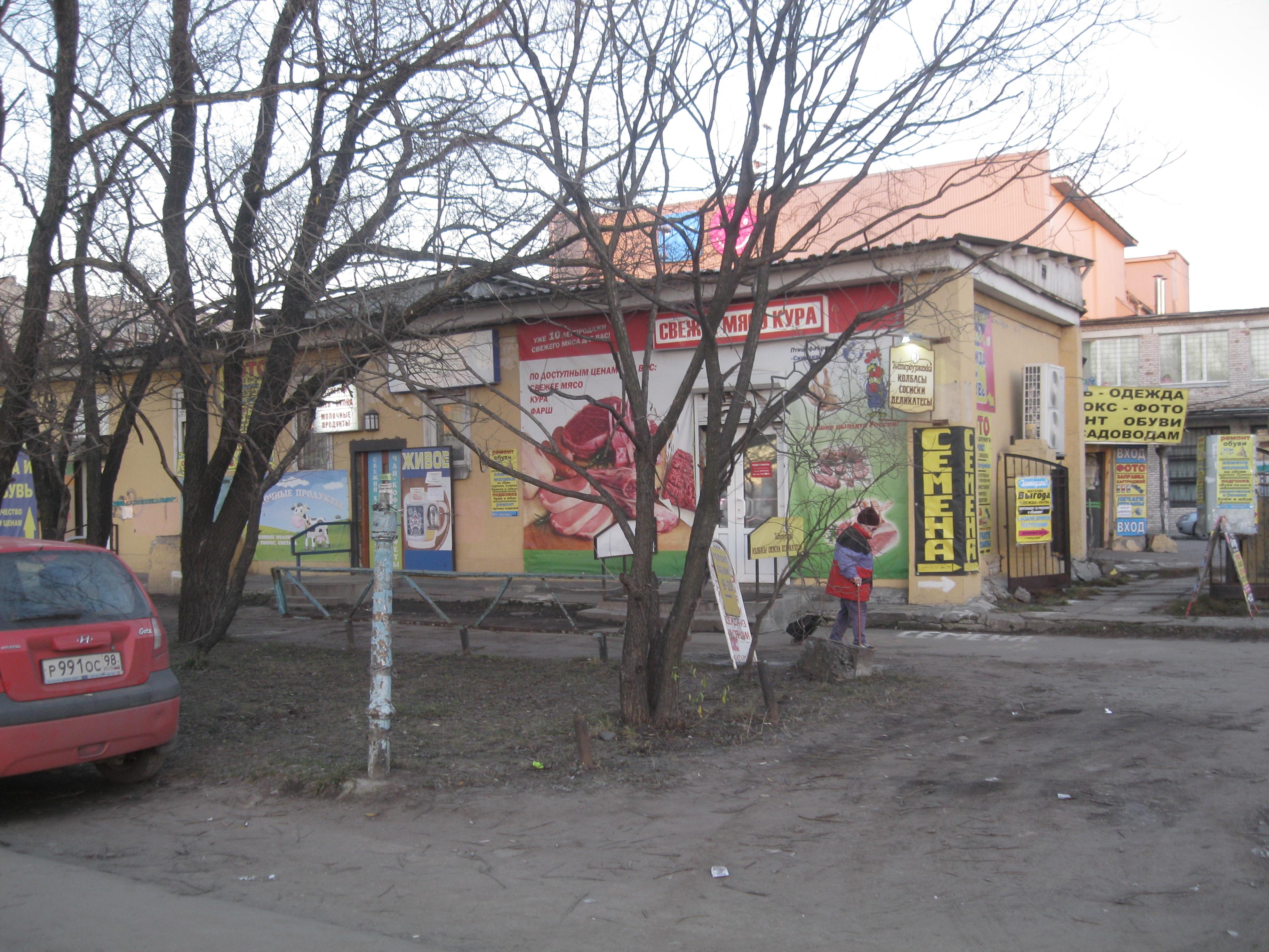 Остатки былой роскоши на улице Типанова и проспекте Космонавтов
