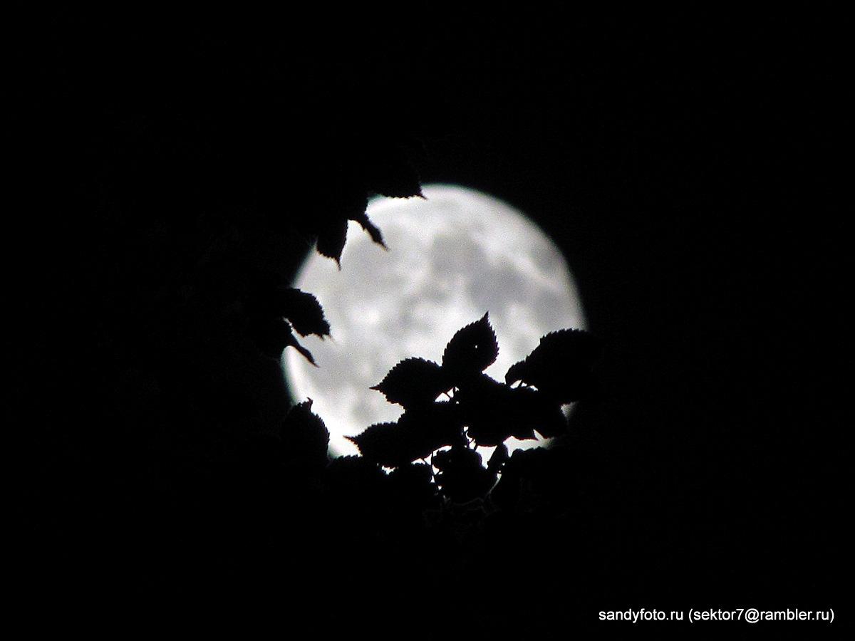 Луна в кадре