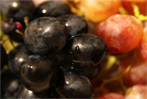 Виноградное_2