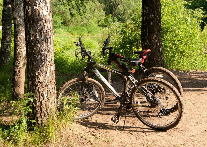 велосипедный дуэт