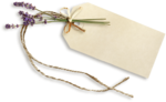 RR_LavenderFields_Element (4).png
