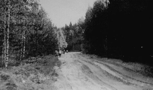 11. На дороге после Рустая