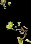 ldavi-paintersfaeries-paintedfloweroverlay2.png