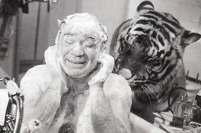 Как Евгений Леонов снимался с тиграми в Полосатом рейсе