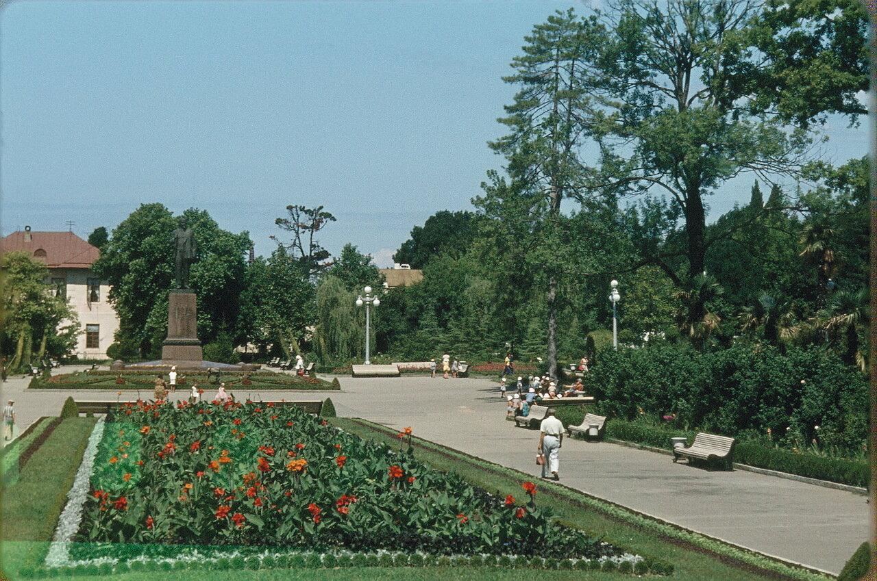 Сад в Сочи
