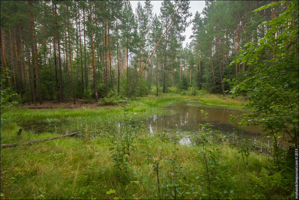Гординский железный рудник Билимбаевского завода
