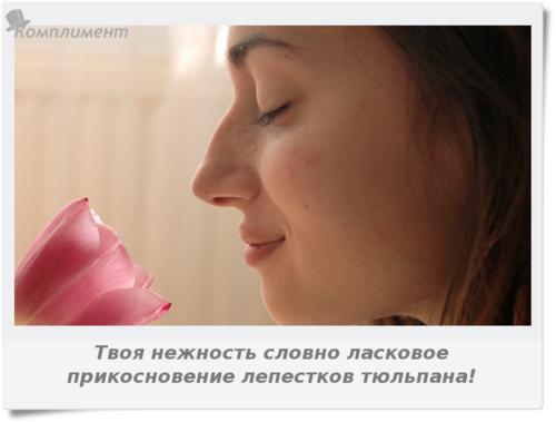 Твоя нежность словно ласковое прикосновение лепестков тюльпана!