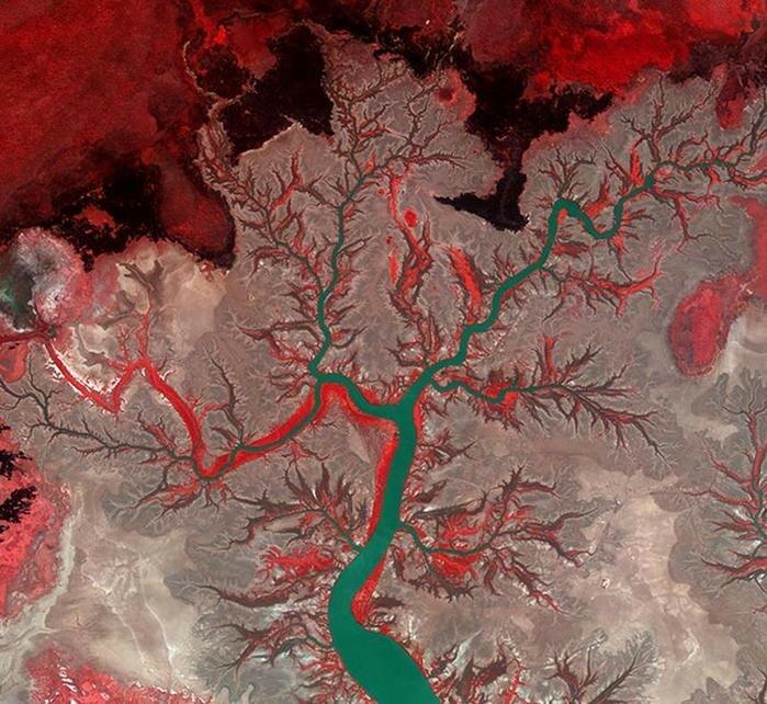 Лучшие снимки Земли со спутника в прошлом году