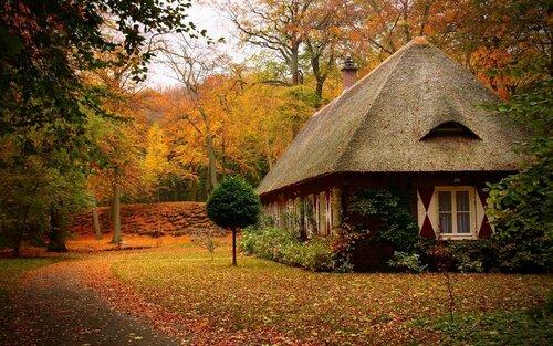 Фотографии чудесных домиков в лесу