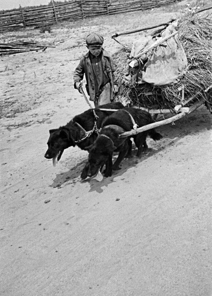 Дороги войны, 1942 г.