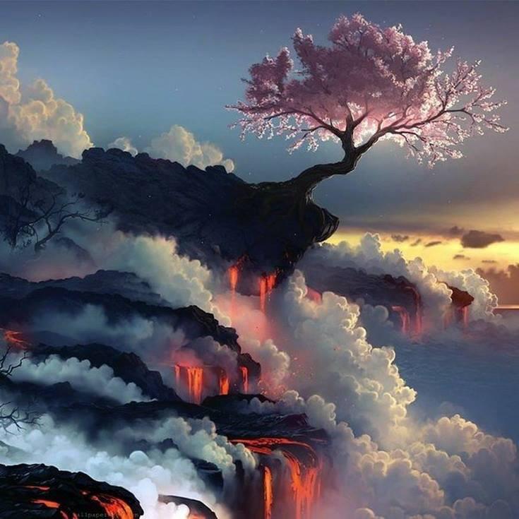 Цветущая сакура на краю вулкана.jpg